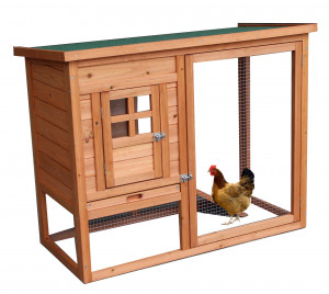 Poulailler standard / 0,5 m2 / 2 poules / toit bitumé 1 pente
