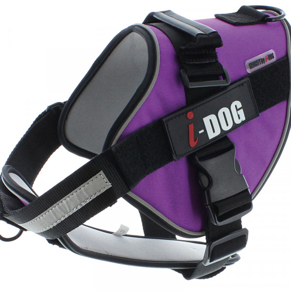 Harnais « NeoCITY » I-DOG - Violet/Gris - Taille L