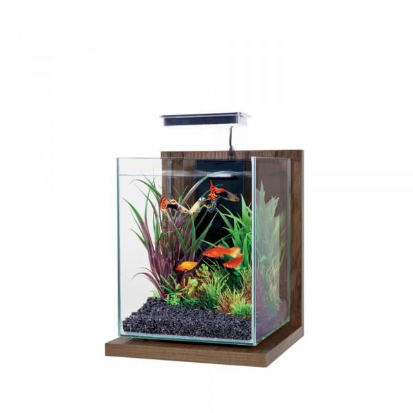 Aquarium JALAYA NOYER, brun