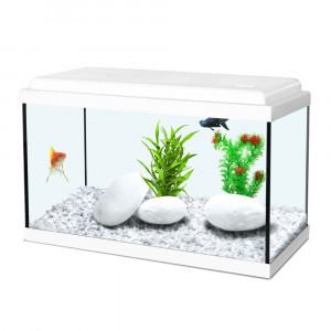 Aquarium NANOLIFE Kidz 40, blanc