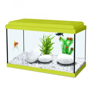 Aquarium NANOLIFE Kidz 50, vert