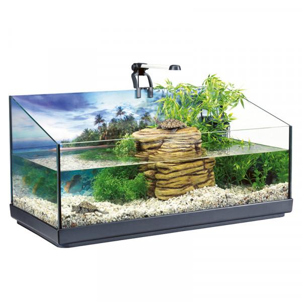 Aquaterrarium Tetra REPTOAQUASET